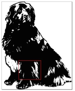 Tibetan mastiff silhouette black and white